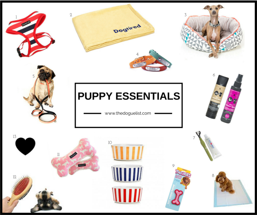 A list of all essential products for a new puppy