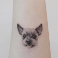a yorkie tattooed onto the arm of a person